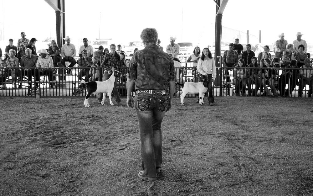 America Rodeo-8.jpg