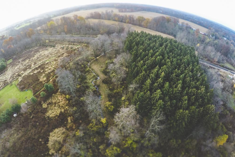Aerial023.jpg