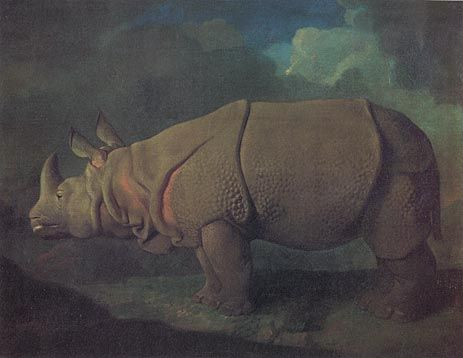 Rhinoceros by George Stubbs