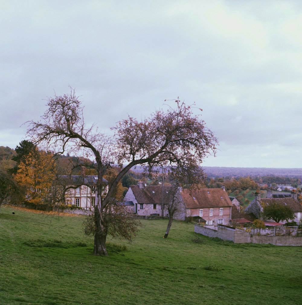 Untitled (Normandy, Nov 2010)