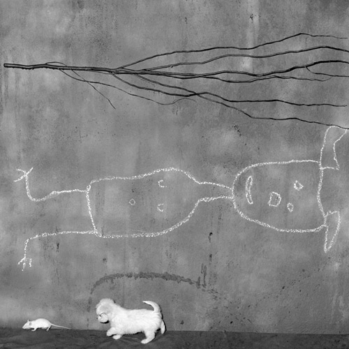 This is on the wish list.  'Place of Upside Down'  by Roger Ballen (via  20x200 )
