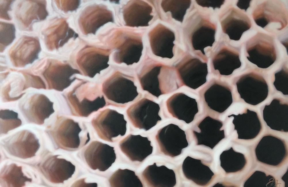 'Centrifugal Honeycomb' $1,200