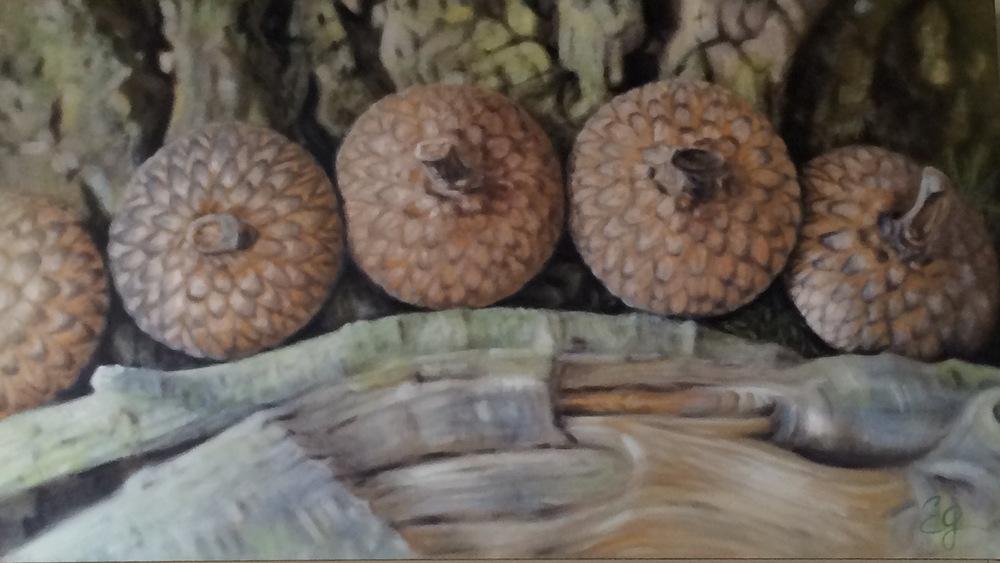 'Five Acorn Tops' $1,200