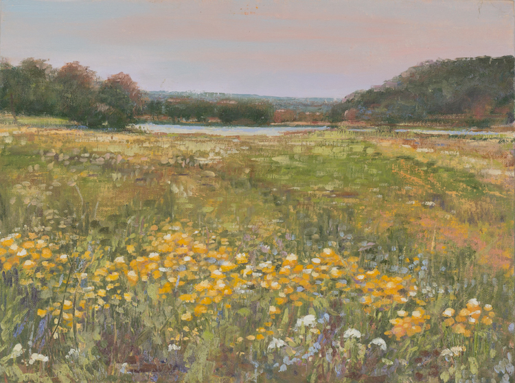 Field Of Gold - 12 x 16 | $600