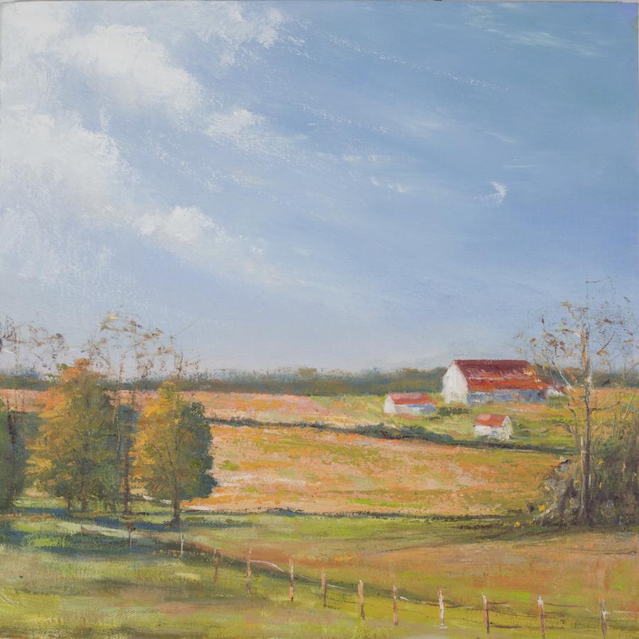 Holmes County Barn - 18 x 18 | $900