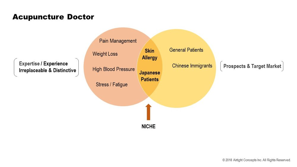 The Niche Diagram 2018 2 circles doctor.jpg