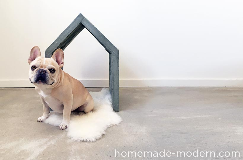 HomeMadeModern DogHouse