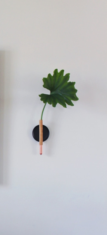 DIY Wall Vase BY Anna Bode