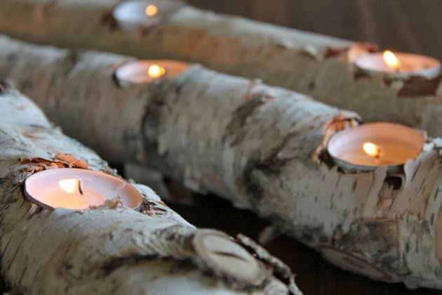 DIY Log Candles  -