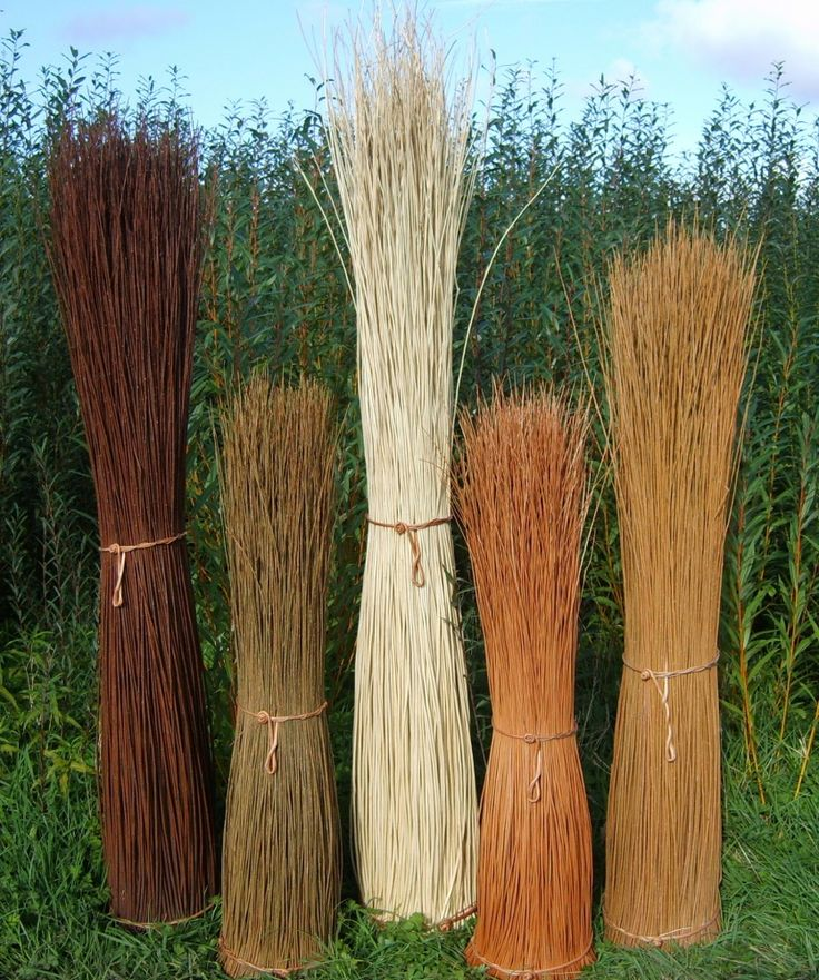129e4e238c4f44c57060dcb6ef79f4c2--willow-weaving-basket-weaving.jpg