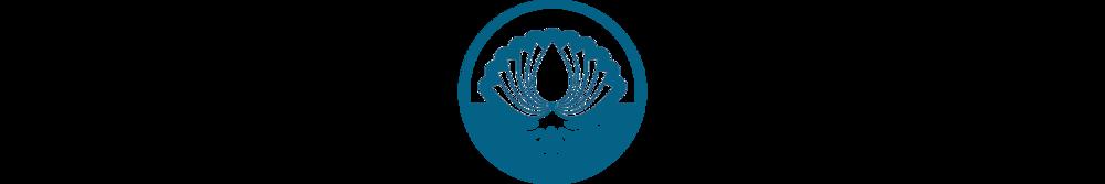 Healing Roots Center Logo