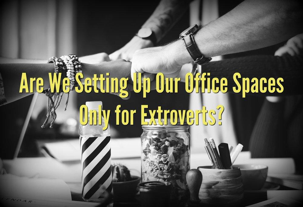 Jon - Extroverts complete.jpg