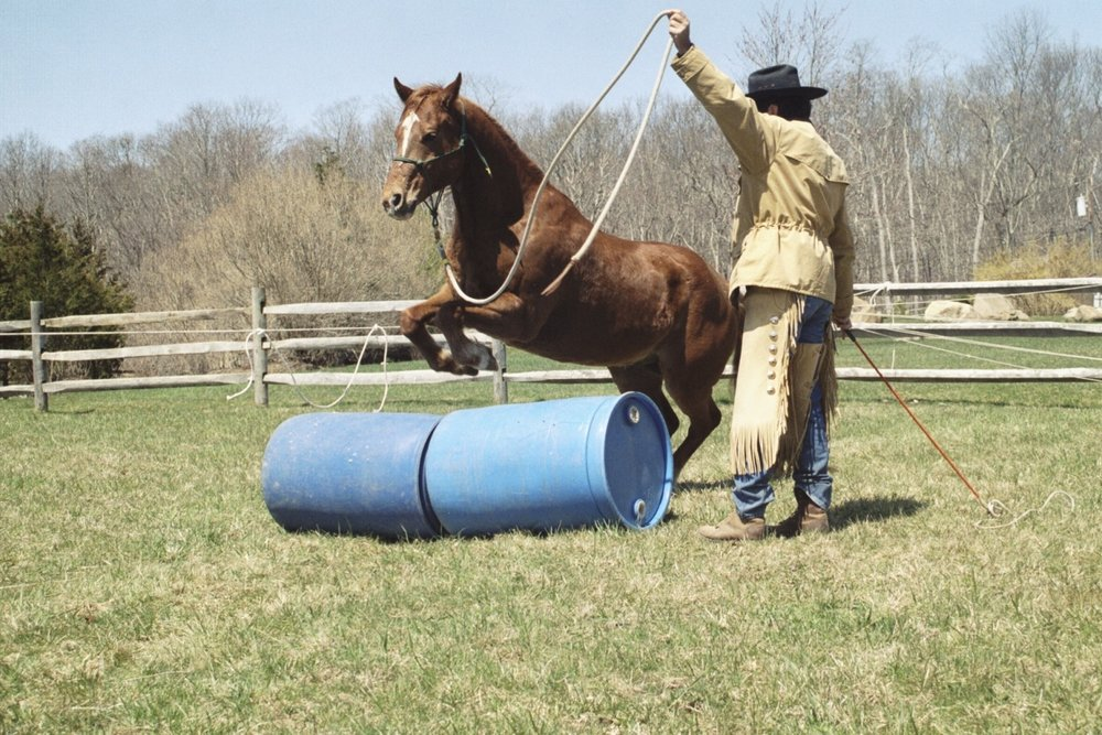 TIM & AUSTIN PRACTICE GROUNDWORK - Photo courtesy -Tim Hayes Collection