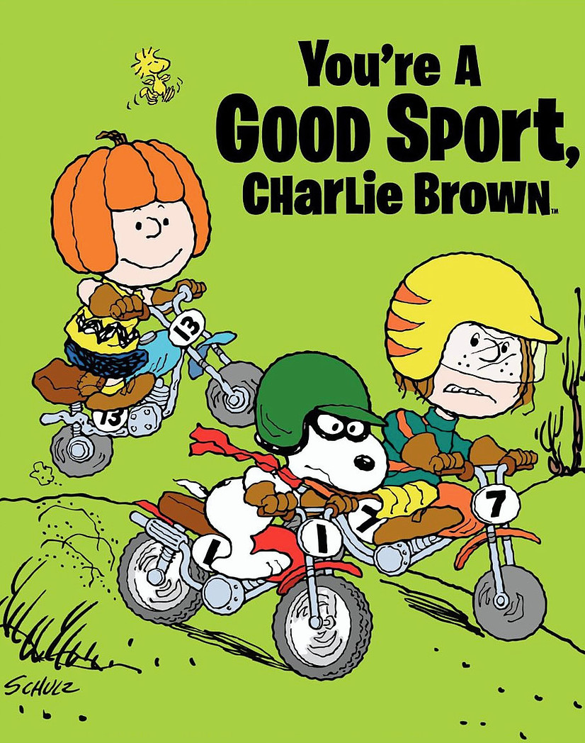 GoodSportCharlieBrown.jpg