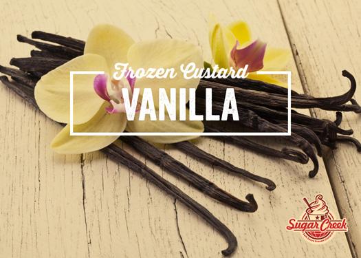 Vanilla Frozen Custard