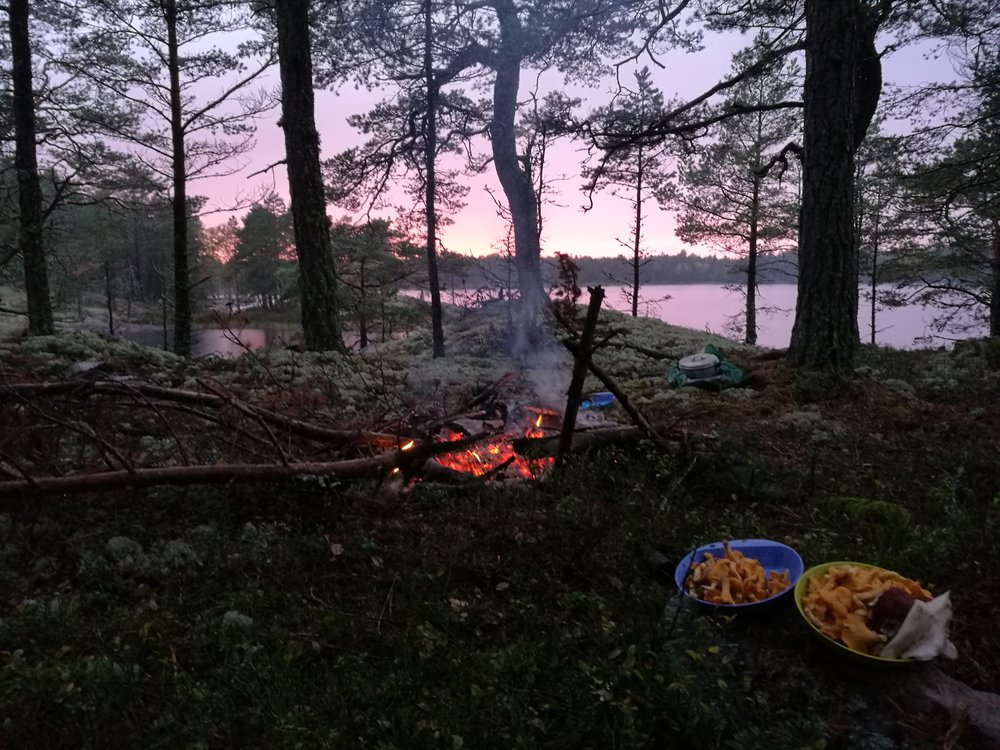 national park stockholm