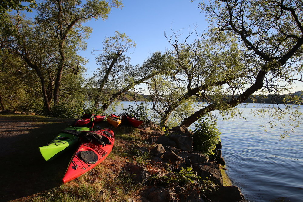 Kayaking in Stockholm City - Guided Stockholm Tours 7