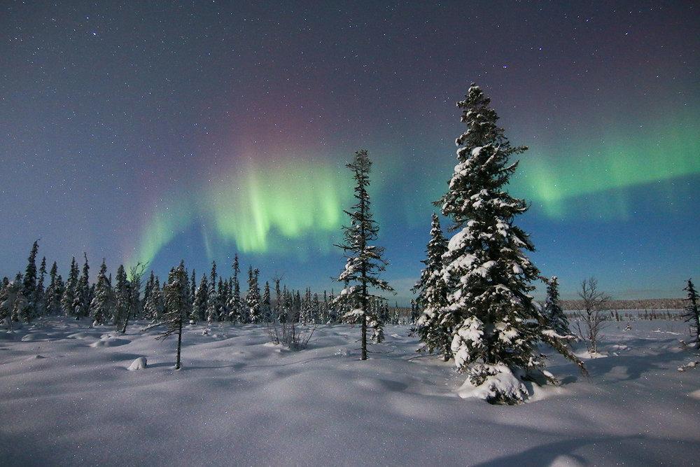 Aurora.2.jpg