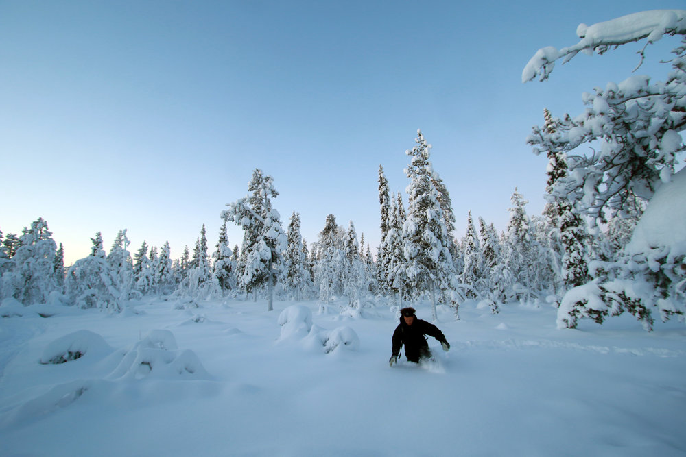 Private Tours in Lapland - Winter Experience Tours - Sweden