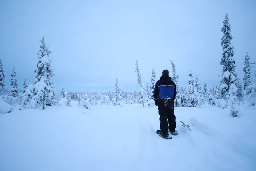 Private Tours in Lapland - Winter Experience Tours - Sweden 2
