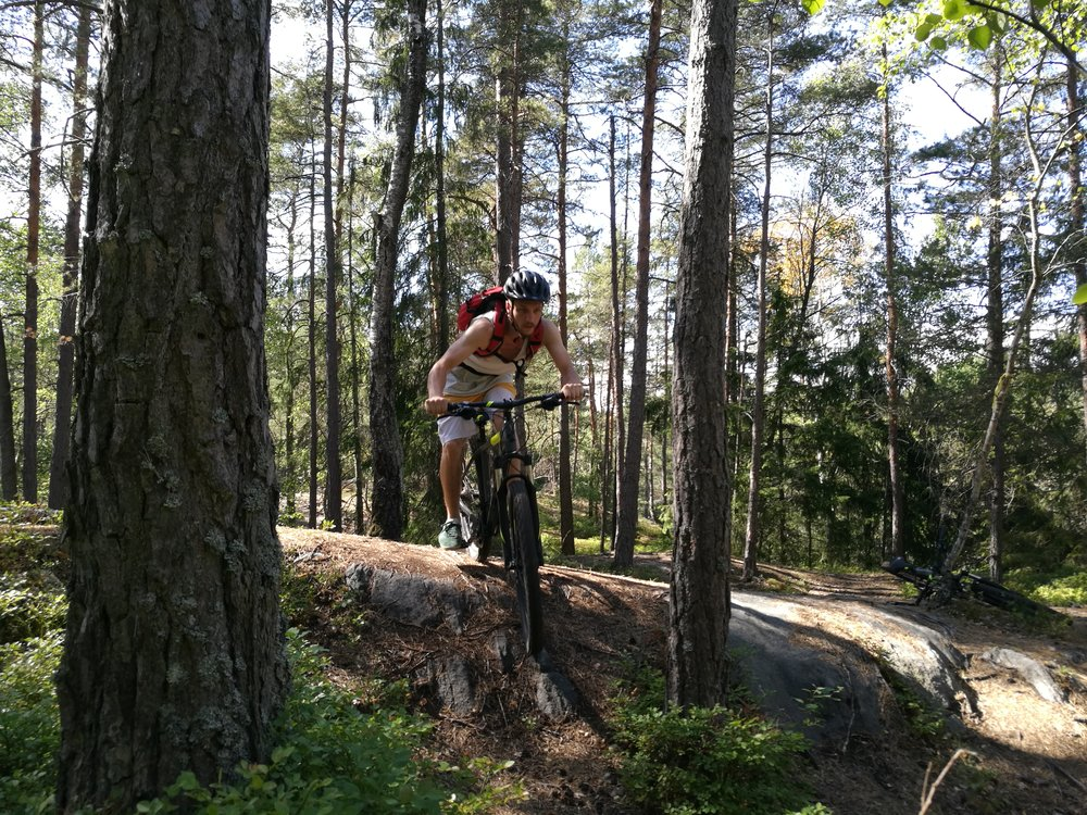 Mountain Biking in Stockholm Forests Guided Tours True Nature Sweden What to do in Stockholm