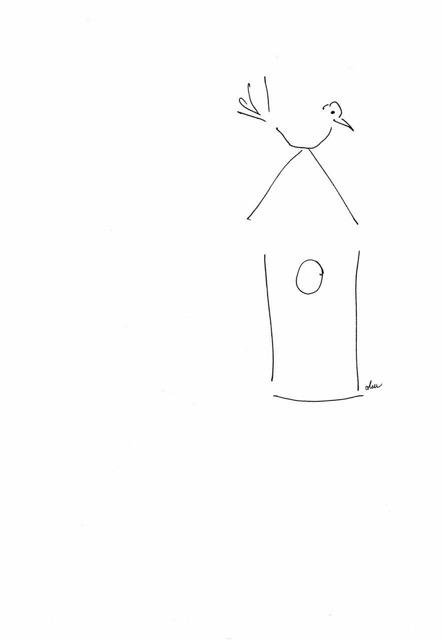 bird and house