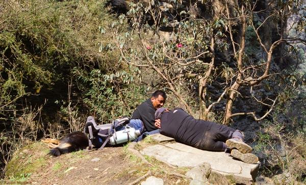 DogFella and Sherpas resting