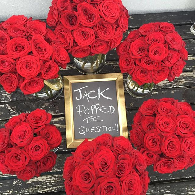 Jack popped the question! And she said yes! Phew! #redroses #engagement💍 #amazing #tbt #flowers #instagood #love #photooftheday #tagforlikes #beautiful # happy #instalike #like #like4like