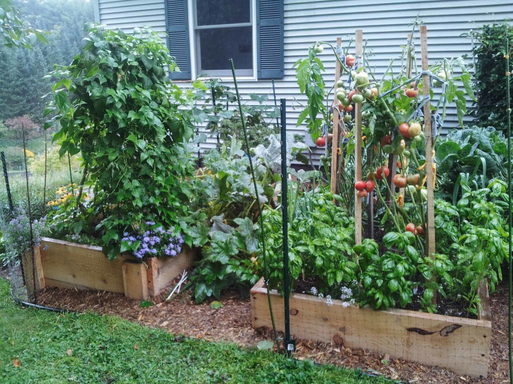 Raised-vegetable-beds-Portfolio.jpg