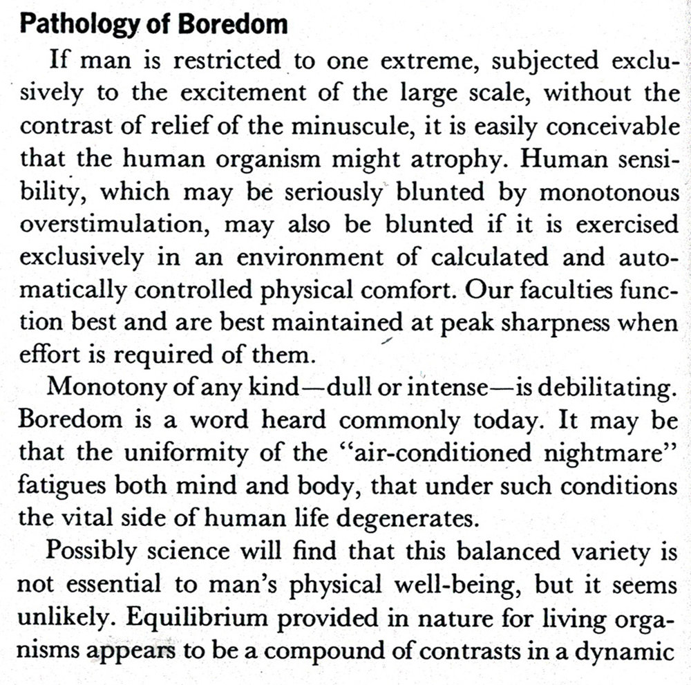 Community&Privacy_PathologyOfBoredom_p78.jpg