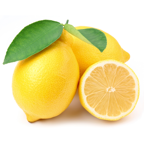 lemon olive oil the cookery