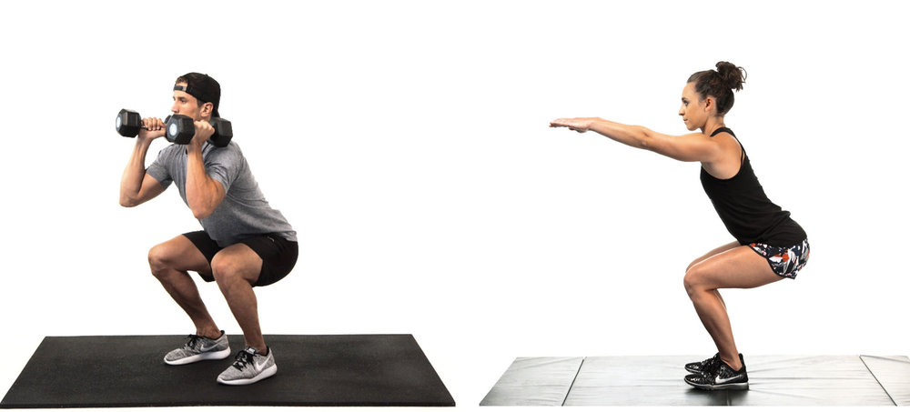 Whole Body Fitness Squat