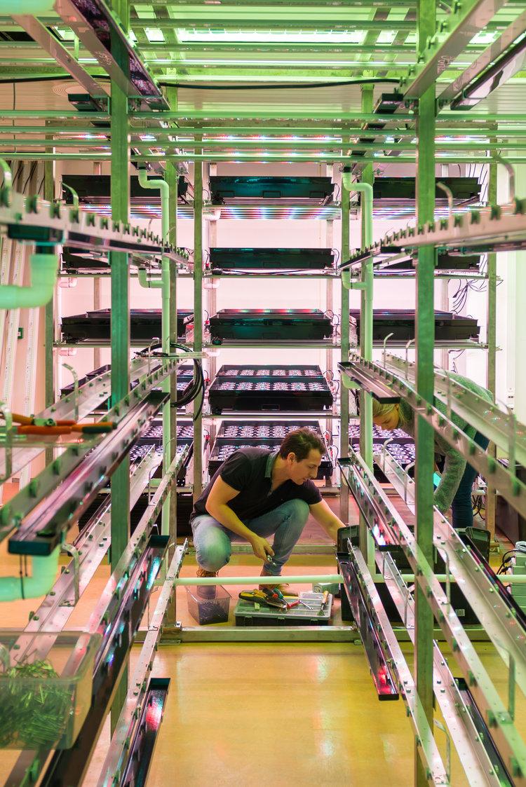 Det siste innen vertikal dykrningsteknologi og lys, her Dirk-Jan og Silje under installasjonen av systemene | Foto: Fornebu foto, Srdjan Popovic