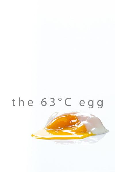 EADIM-63-Deg-Egg-6