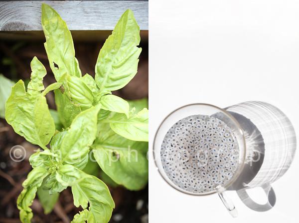 EADIM-Basil-Panna-Cotta-Tomato-Sorbet-02