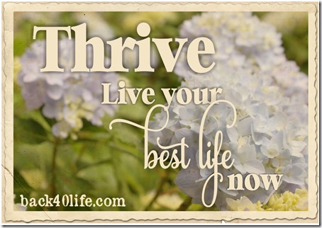 Thrive button rect