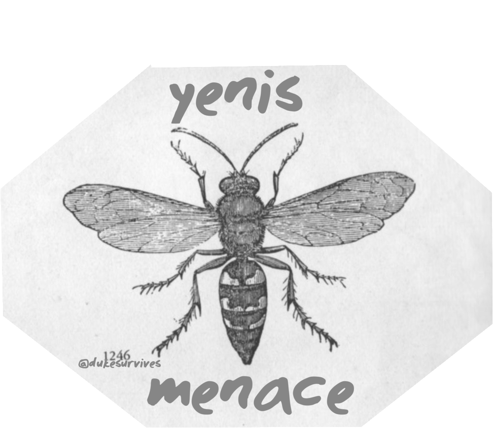 yenis comb.png