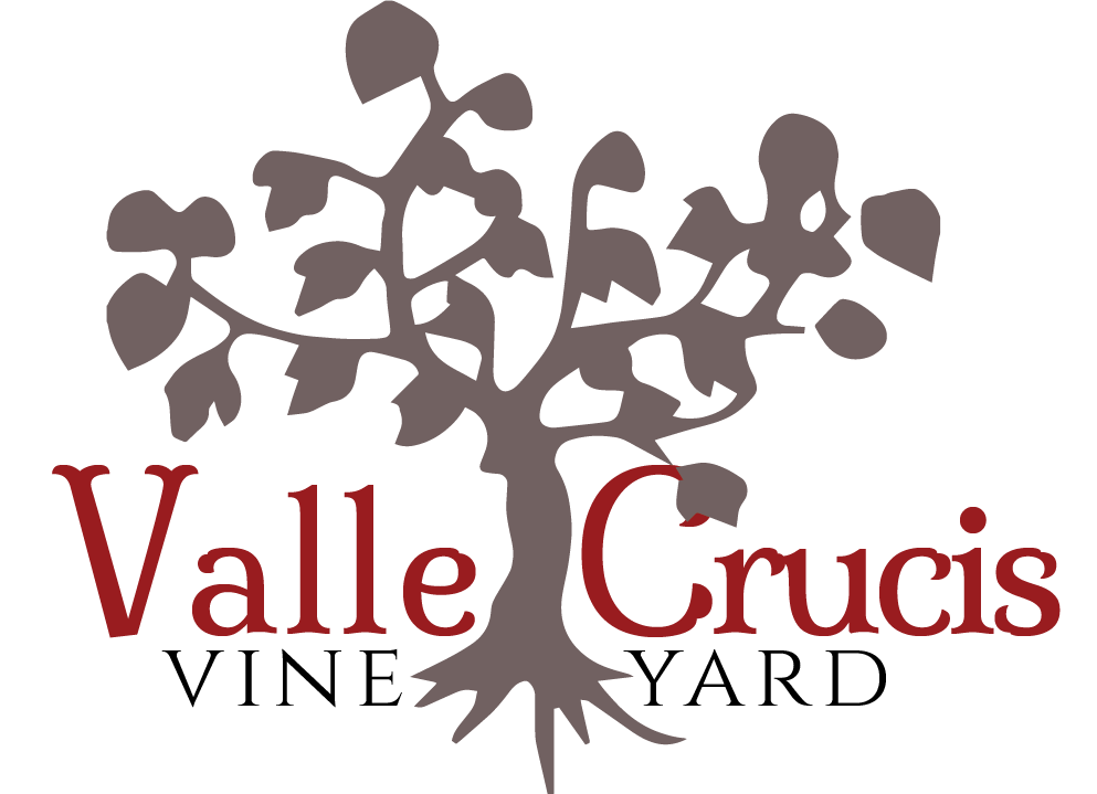 Valle Crucis Vineyard