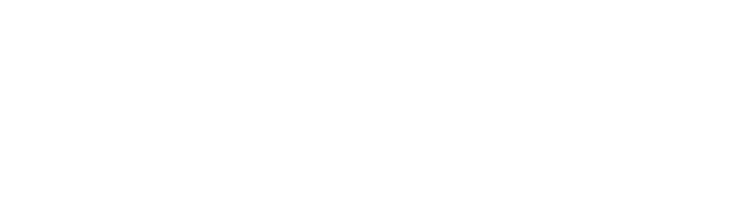 Georgia Quarter Guitars