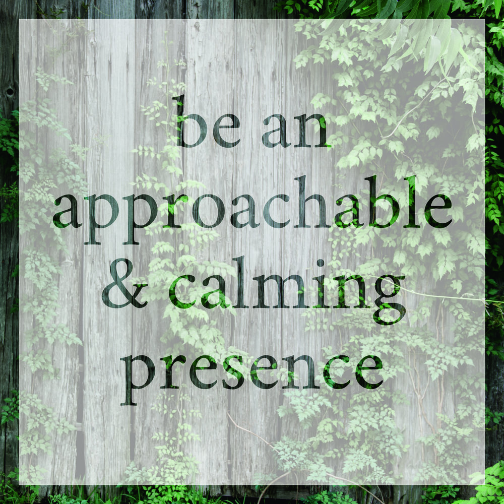 Be an approachable & calming presence.