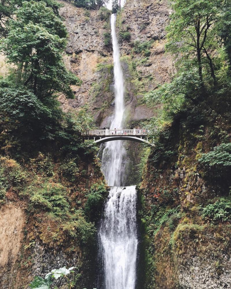 Multnomah Falls, Tripp Films