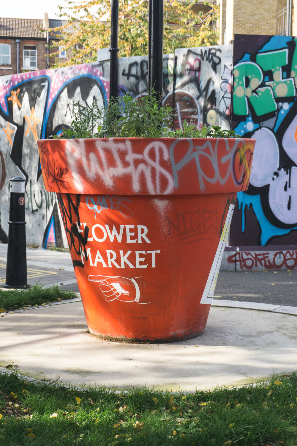 Flower Market_London_Tripp Films.jpg
