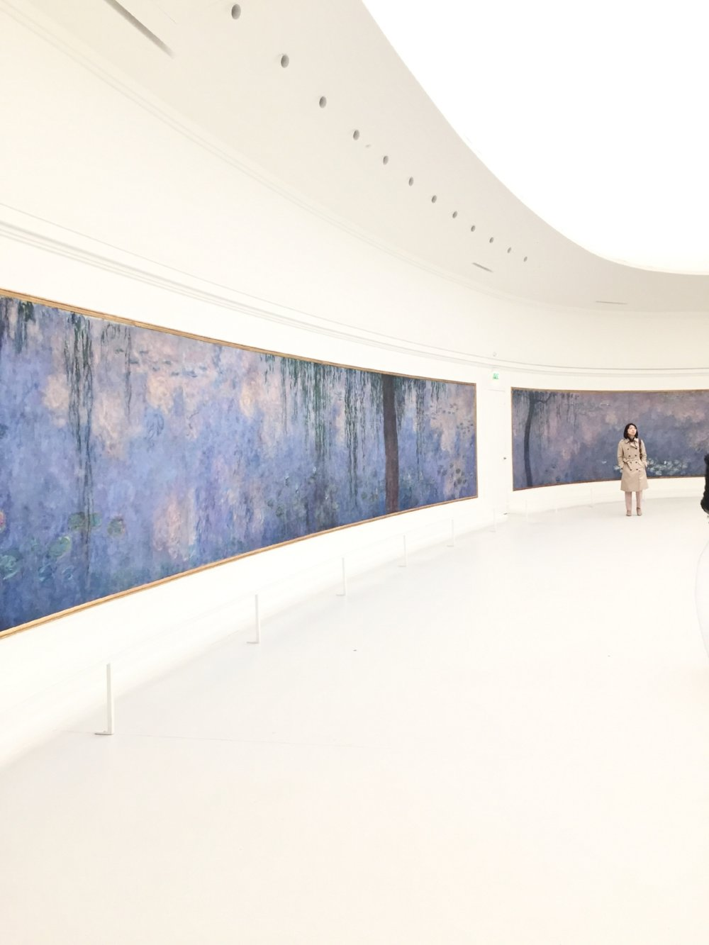 Tripp Films_Paris_Monet Water Lillies_L'Orangerie_Europe Tripp