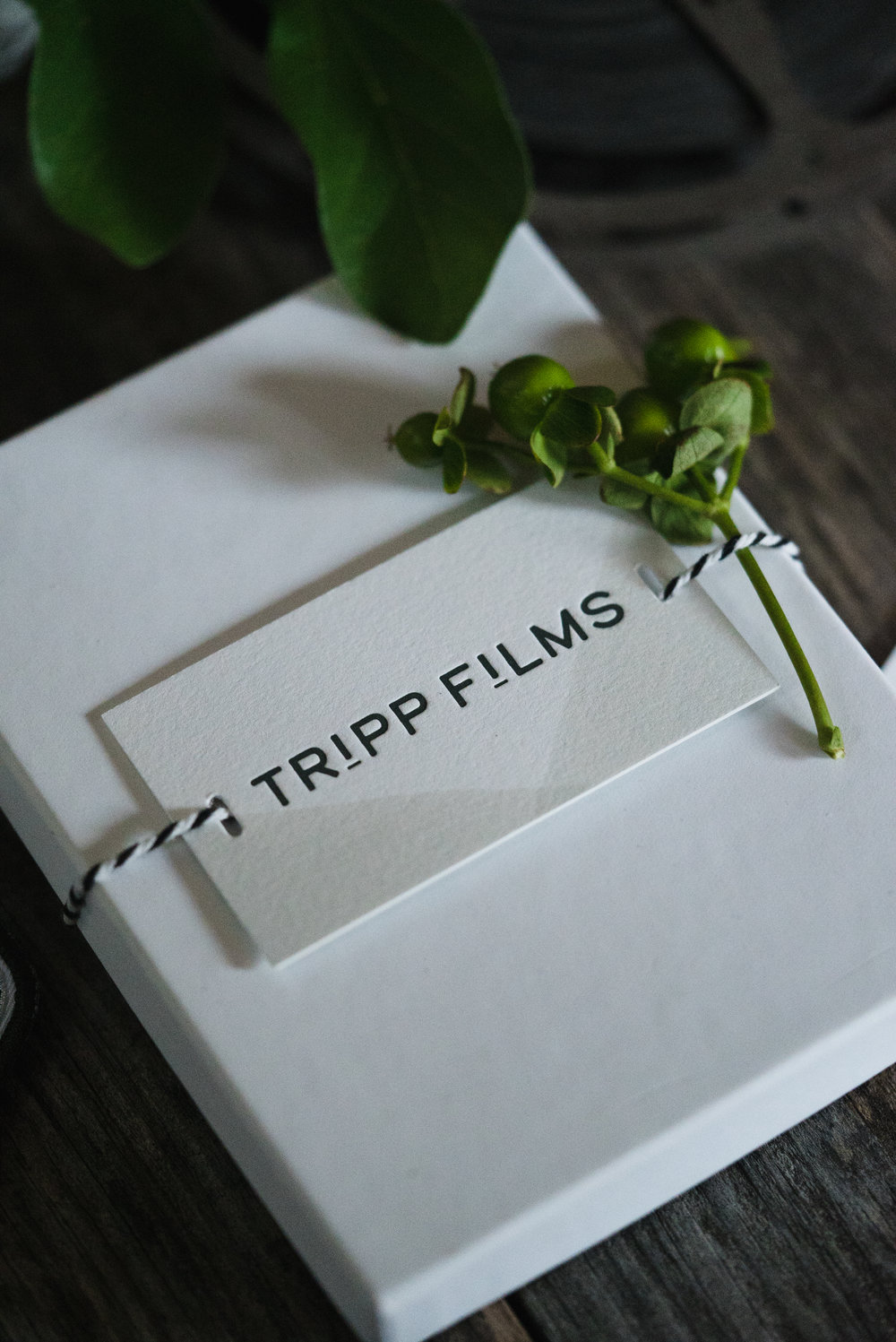 Tripp Films_5 Things I Learned as a Business Owner