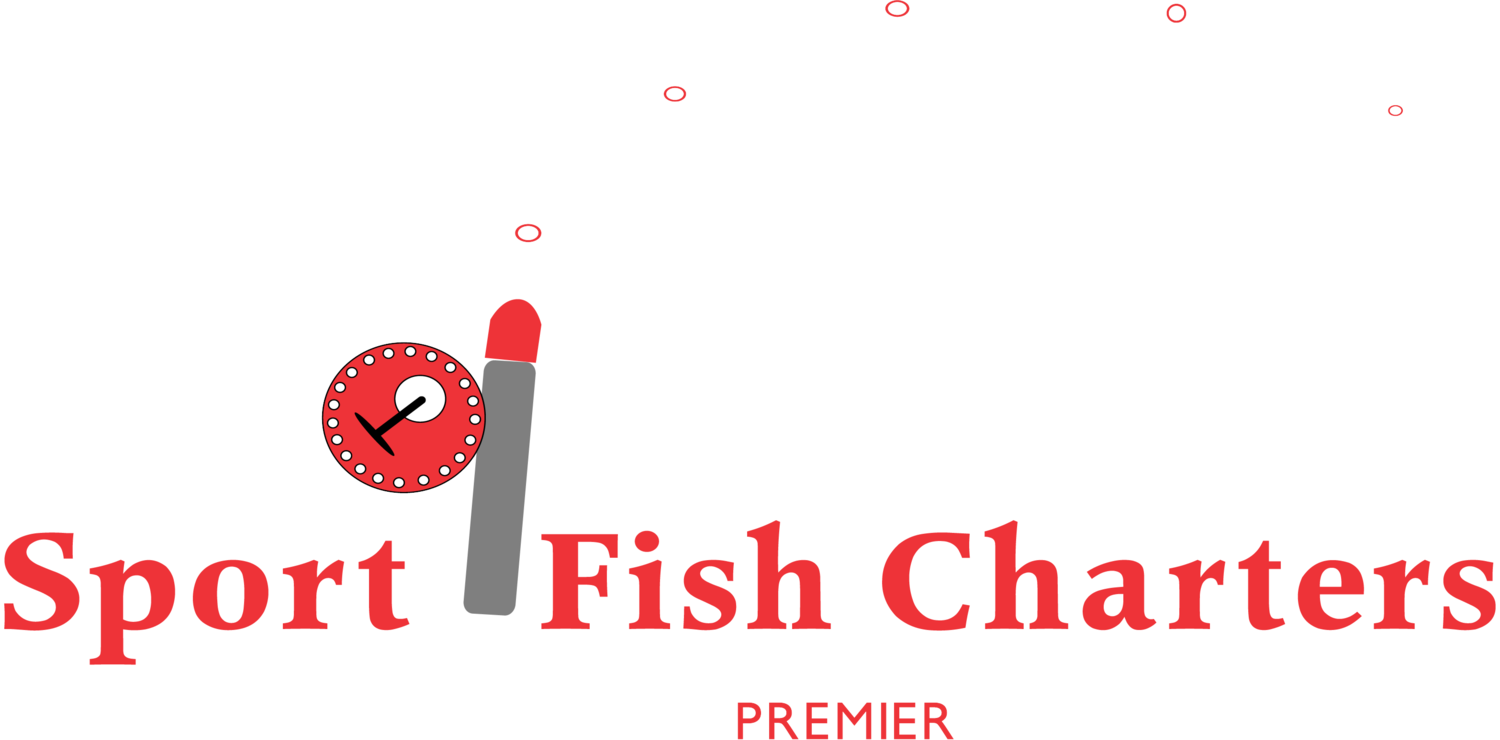 Drop Down Sport Fish Charters