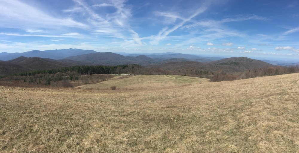 View from Max Patch looking west.