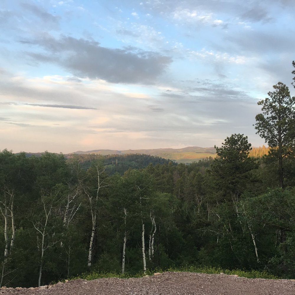 View of the Black Hills from our cabin.