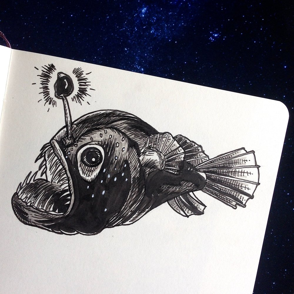 Day Fourteen - Lanternfish