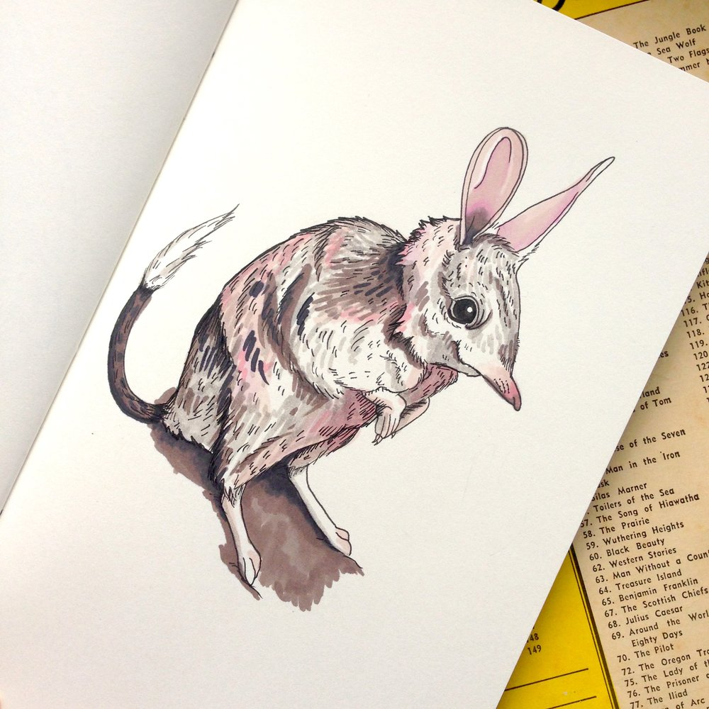 SOLD - Day Twenty - Bilby