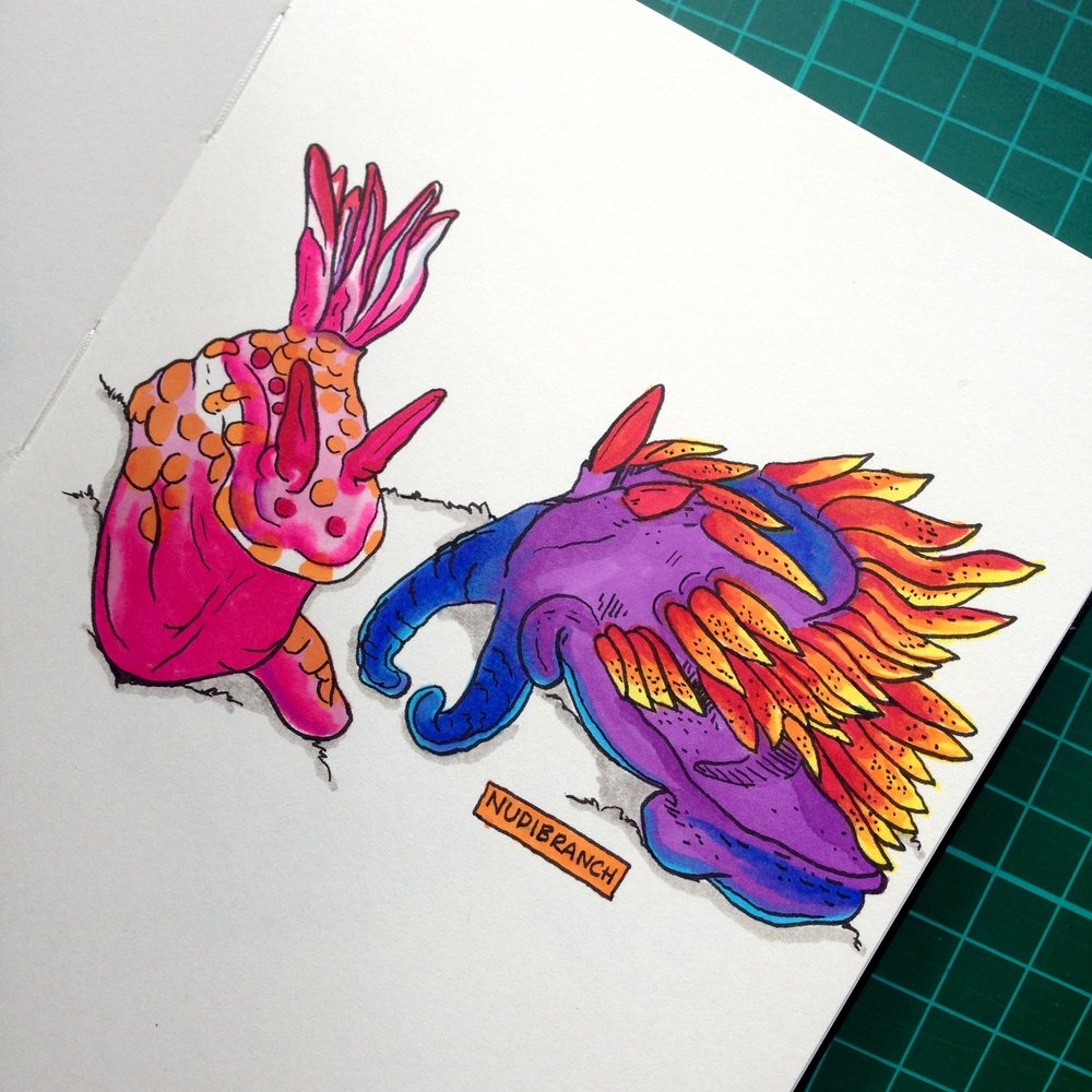 Day Twenty-Two - Nudibranch